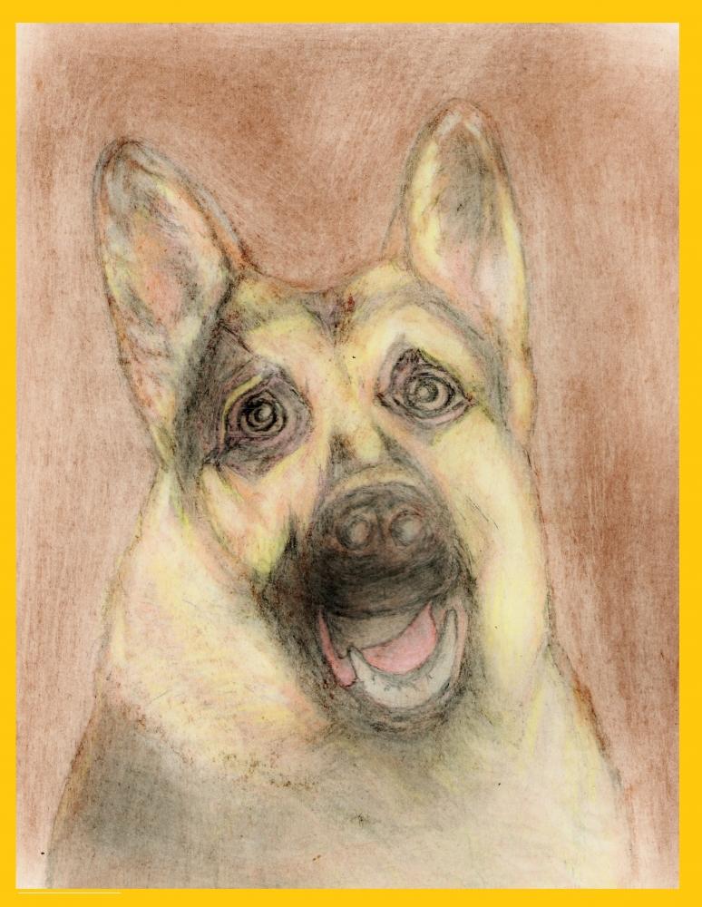 Lassie by Vuilletjossjoss